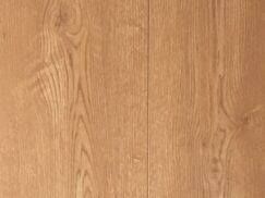 Tawny Oak2